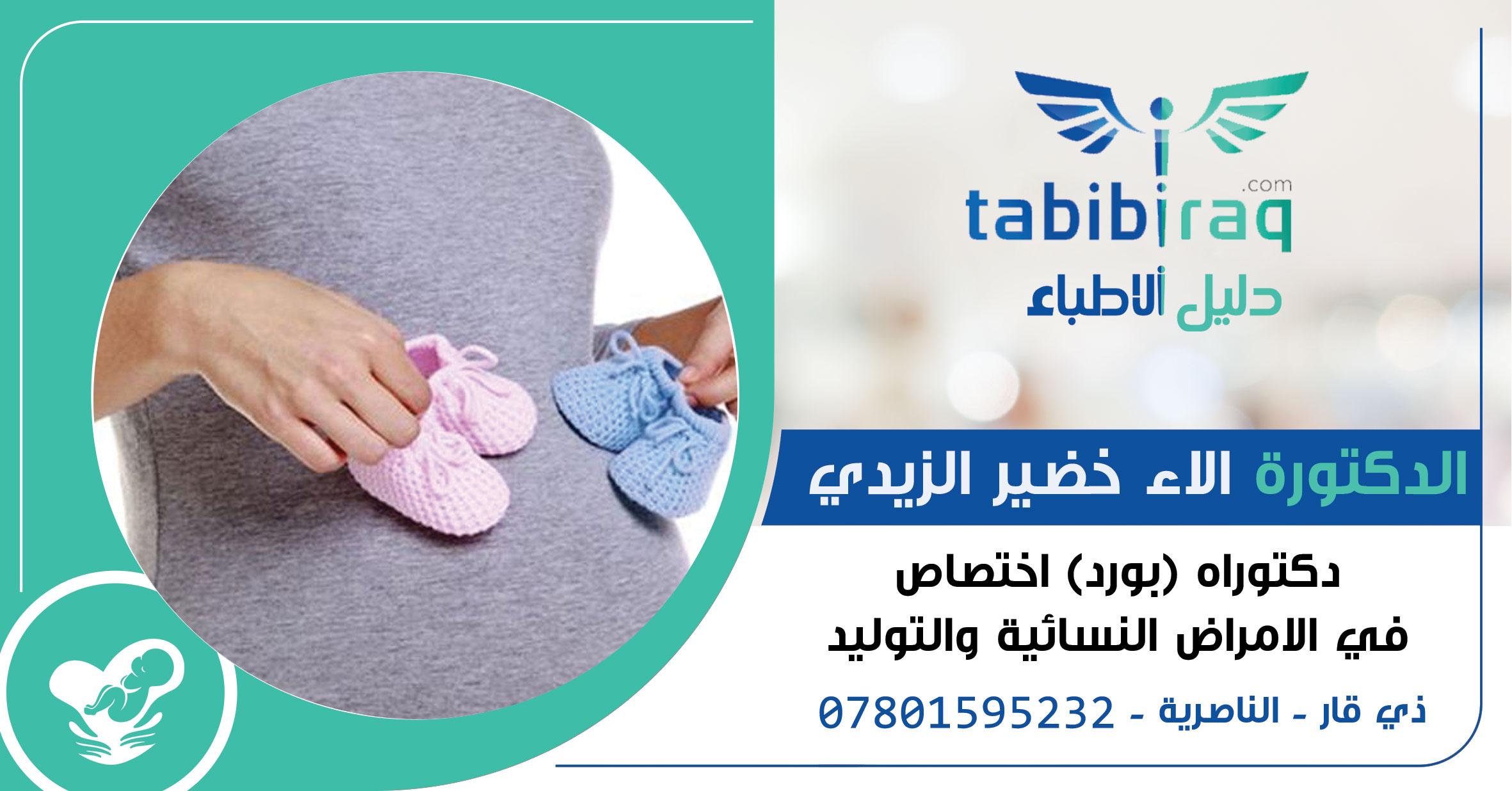 الدكتورة الاء خضير الزيدي