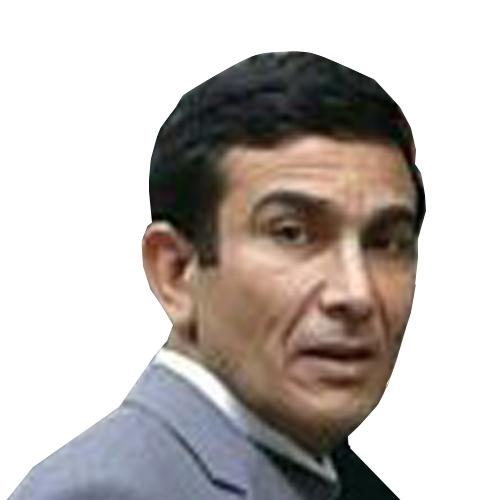 الدكتور امين الزامل