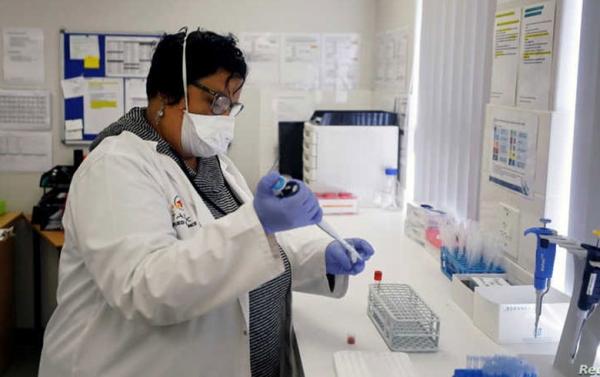 نتائج أولية مبشرة.. دراسة تبحث العلاقة بين لقاح السل والمناعة ضد كورونا