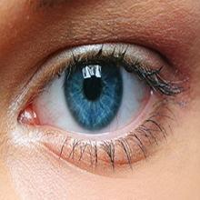 ماهي العين ؟؟